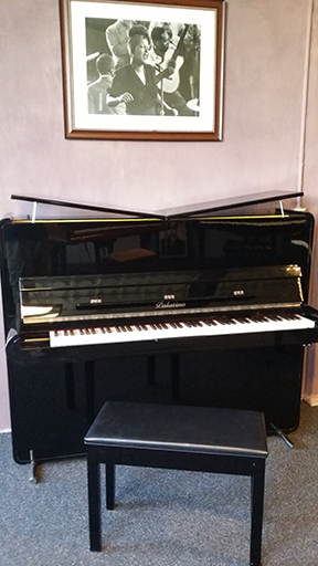 2010 Palatino Studio Piano