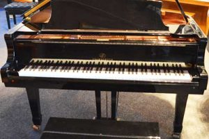 Pramberger Grand piano in satin ebony