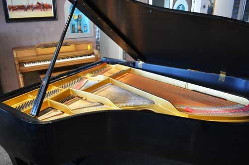 Yamaha G%$ Grand piano soundboard at 88 Keys Piano Warehouse